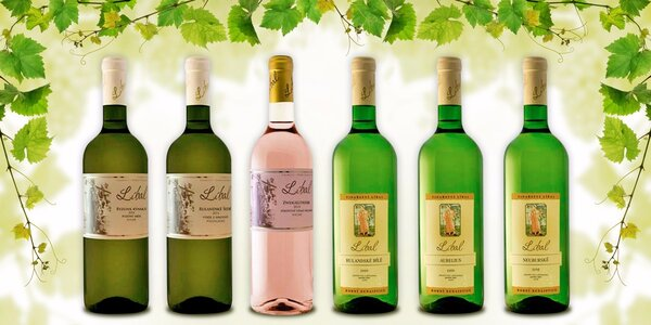 Letní kolekce 6 vín z vinařství Líbal