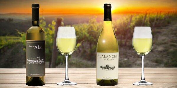 Letní bílá vína z Itálie