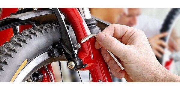 Profesionální servis jízdního kola