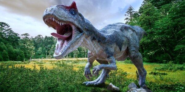 Výlet za dinosaury: Den v polském JuraParku