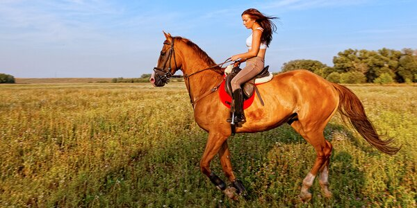 Hodina v koňském sedle: Vyjížďka nebo výuka