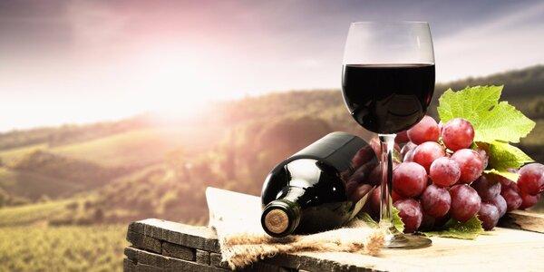 All inclusive vstup na Vimperské vinobraní 2016