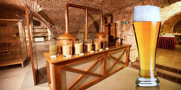 Vstup do muzea pivovarnictví v Černé Hoře