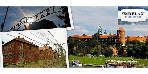 Celodenní exkurze do Osvětimi a Krakova