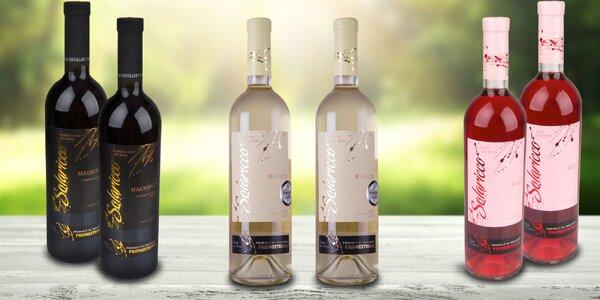 Kolekce osvěžujících vín Solaricco