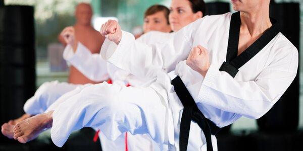 Tréninky Taekwondo WTF