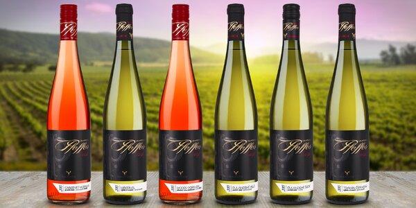 6 lahví výtečného moravského vína