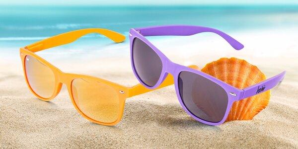 Zábavně barevné sluneční brýle s jezevčíkem