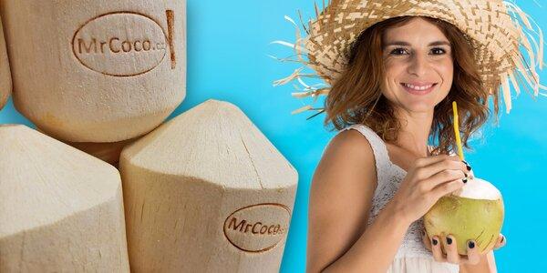 Mladý kokos - opravdová chuť tropického léta