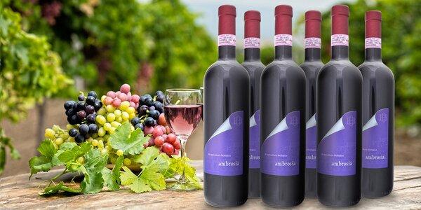 Italské mámení: Červené vínečko Barbera 2009