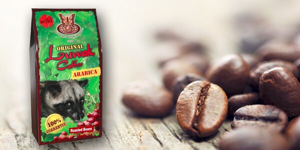 Cibetková káva Kopi Luwak - Arabica v 50gramovém balení