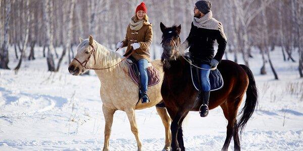 60 minut v koňském sedle