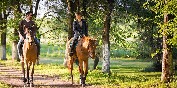 Víkend na koňské farmě s plnou penzí