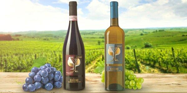 Znamenitá italská vína