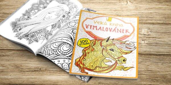 Relax s pastelkami: Velká kniha Vymalovánek