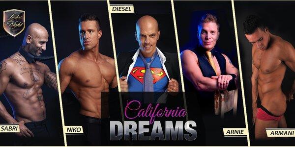 Pánská striptýzová formace California Dreams