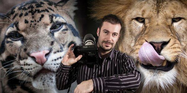 Fotografujte zvířata jako profesionálové