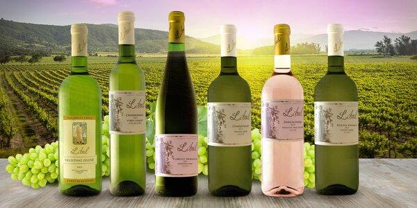Kolekce šesti vín z Vinařství Líbal