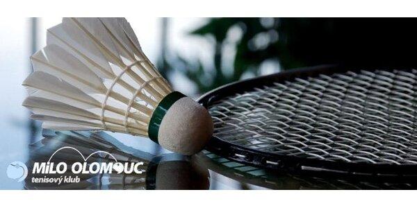 120 Kč za hodinový pronájem badmintonového kurtu!