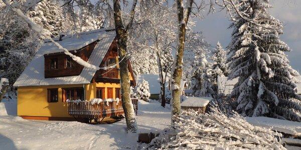Zimní rodinná dovolená na Lipně