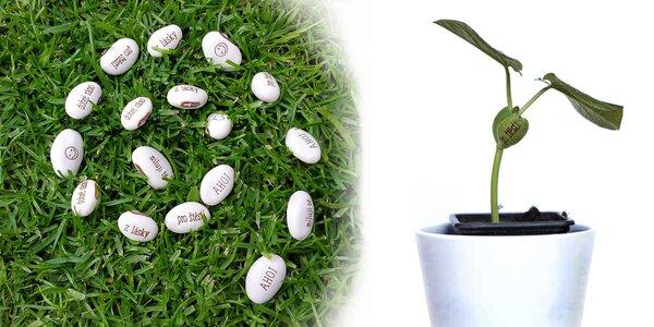 Nechte lásku vyrůst: kouzelné fazole s šesti vzkazy
