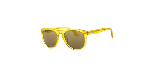 Pánské jantarové sluneční brýle Calvin Klein s tmavými skly