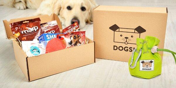 Dogsie: Box plný hraček a pamlsků pro vašeho psa