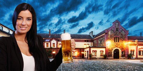 Prohlídka vč. degustace v pivovaru Bohemia Regent