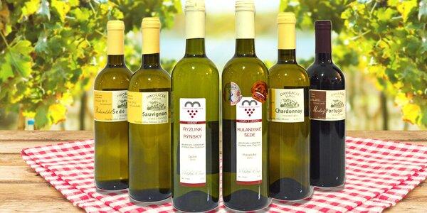 Box šesti znamenitých vín z Moravy