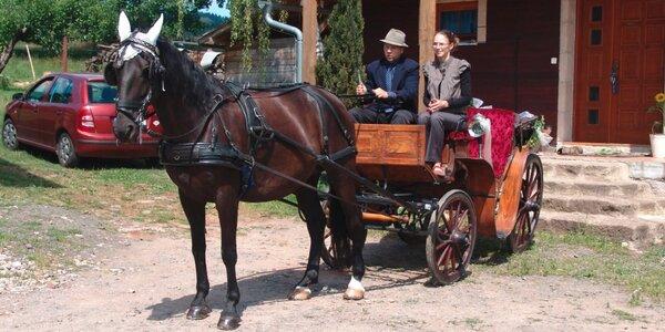 90minutová jízda historickým kočárem pro dva