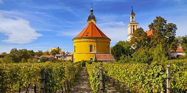 Pobyt s koštováním vína v Malých Karpatech