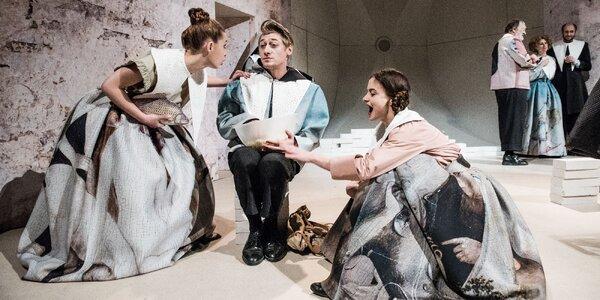 Vstupenka na Krysař ve Švandově divadle