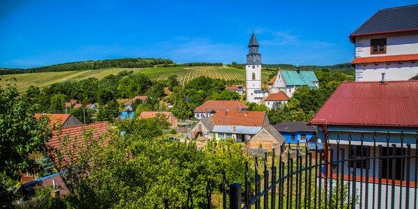 Vinařská pohodička na jihu Moravy s wellness