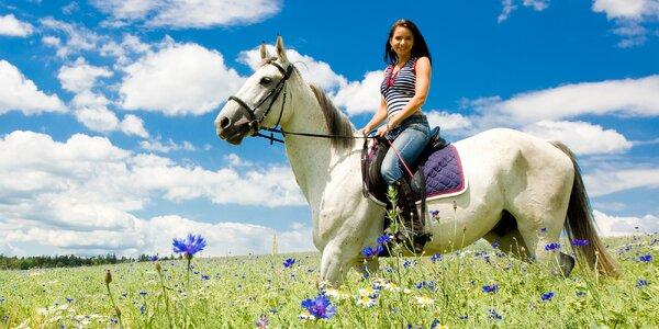 Tři letní dny na koňské farmě na jižní Moravě