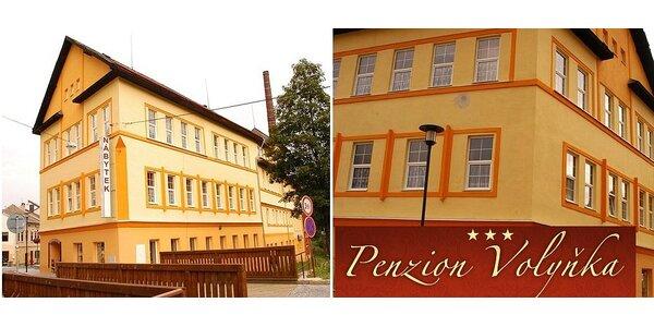 Týdenní dovolená na Šumavě v penzionu Volyňka*** pro 2 s polopenzí