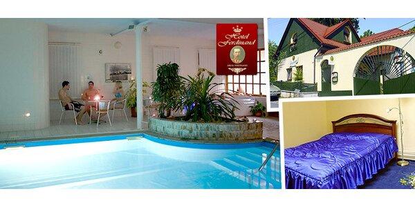 1 noc v hotelu Ferdinand*** s bazénem a sektem