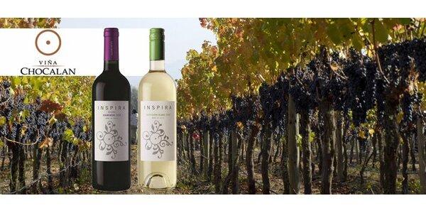 199 Kč za DVĚ kvalitní vína z Chile. Červené a bílé!