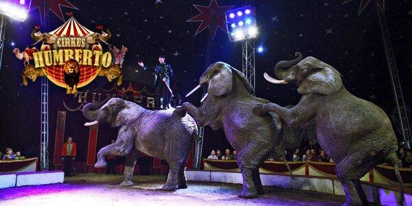 Lístky na show cirkusu Humberto