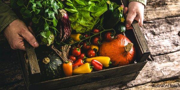 Semínka rajčat, paprik či bylinek a hydrogel