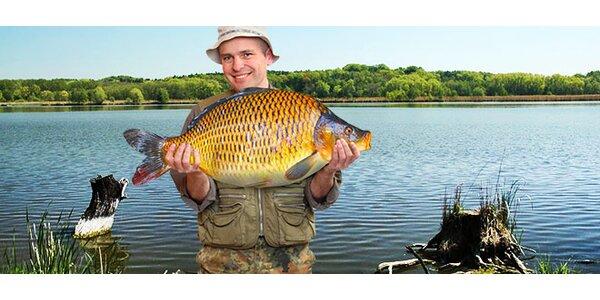Týdenní rybářská povolenka a 4 ryby v ceně! Rybník Nový Stav