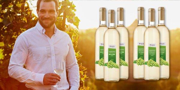 Exkluzivní kolekce 6 bílých vín ze Slovenska