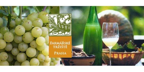 65 Kč za 2 litry bílého burčáku z moravského vinařství Chateau Lednice
