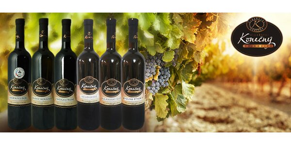 Výběr 6 přívlastkových vín z Čejkovic