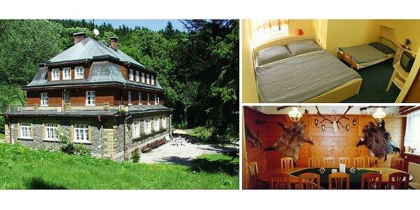 Pobyt na 2 noci v Krkonoších pro 2 osoby s polopenzí na stylové horské chatě…