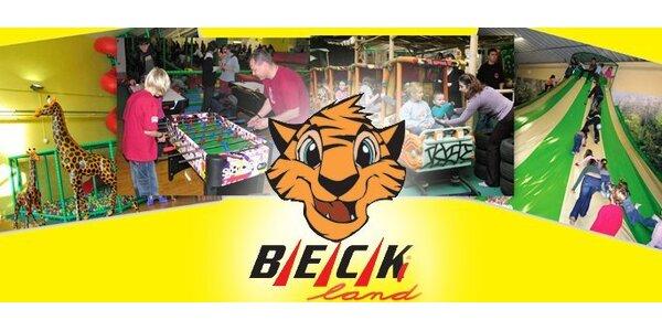 149 Kč za vstup PRO DVA do dětského zábavního centra Beckiland!