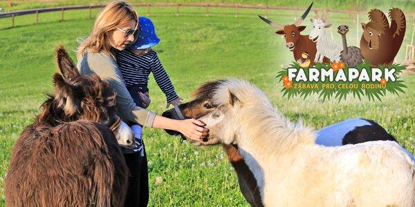 Návštěva Farmaparku Soběhrdy a krmení zvířátek