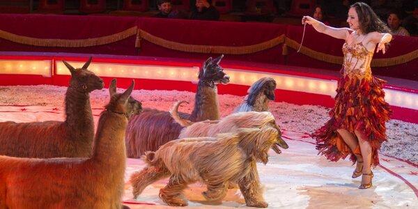Cirkus Bernes v Dobříši a Příbrami
