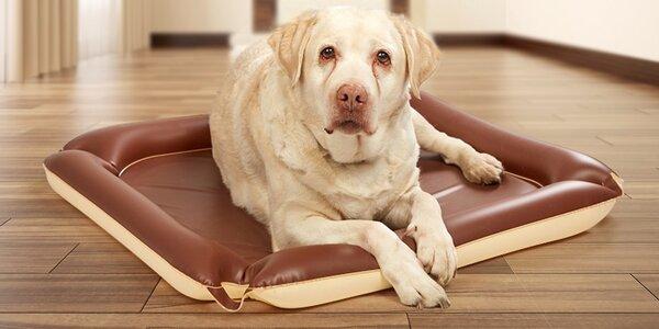 Voděodolná a omyvatelná měkká podložka pro psy