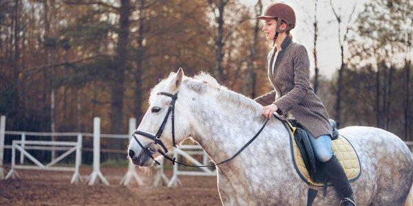 Zážitkový pobyt na farmě pro milovníky koní