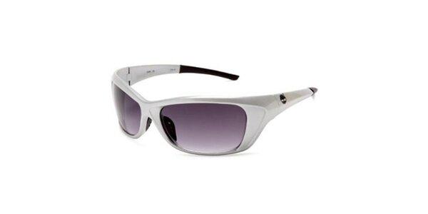 Stříbrné sluneční brýle Timberland